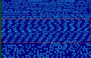 目標加密副檔名的名單