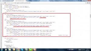 從網頁的原始編碼一看,14張剩餘優惠券是一早預設的。